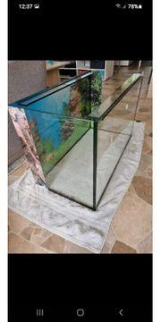 Aquarium 80 40 50 160