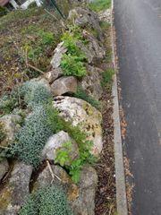 Natursteine Felssteine an Selbstabholer