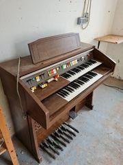 Elektro Orgel abzugeben