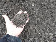 Grob gesiebte Erde 6cm - Zwischenboden