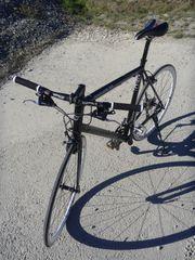 Fahrrad Fitnessbike Dynamics PROLOG RS