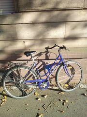 Herren-Fahrrad 28 ZOLL