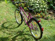 Stabiles 26 Fahrrad Trekkingrad kaum