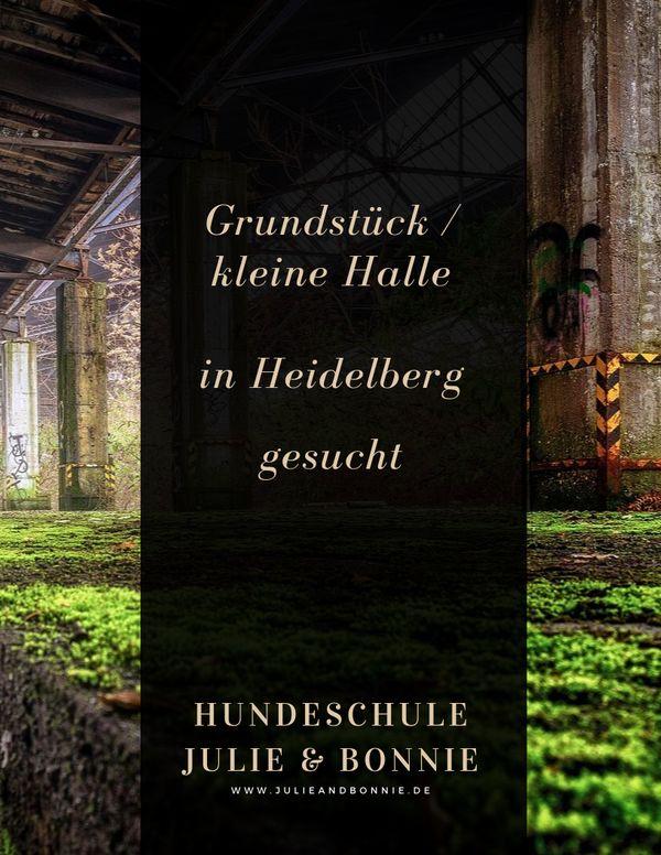 Grundstück Halle in Heidelberg gesucht