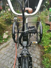 E-Bike Dreirad Elektrofahrrad