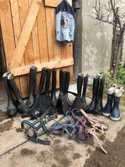 Ausrüstung für Reiter jung oder