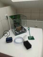 10 Liter Aquarium mit Zubehör