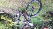 GRECOS Fahrrad