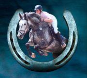 Pferdebox ab sofort frei