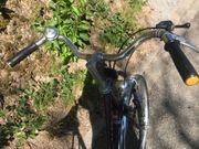 Paloma Fahrrad Stadtrad Damen