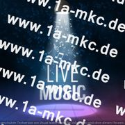 Musiker Bands Shows
