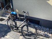 Pegasus Milano Trekking Bike 28
