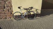 Lakes Rennrad Rahmenhöhe 61cm