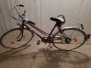 Fahrrad Marke Enik