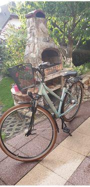 Damen City- und Trekkingrad Carver