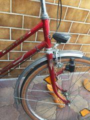 Studenten Fahrrad Damenrad alt Retro