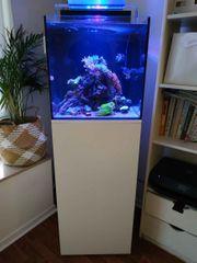 Aqua Medic Cubicus Meerwasser 140l