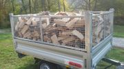 birke-eiche brenholz
