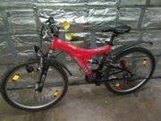 Fahrräder aus Garage Auflösung Preis