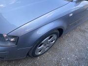 Kotflügel Links Audi A3 8P