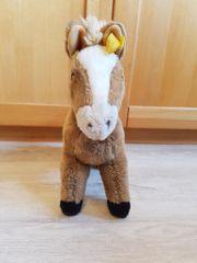 STEIF F COSY FERDY Pferd