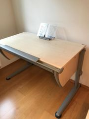 Schreibtisch - Moll Classic
