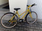Damen Kinder Mountainbike Fahrrad