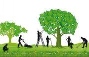 Gartenpflege Rasen Hecken Busch und