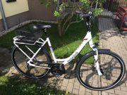 Citybike Pegasus 26 inkl toller