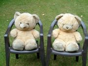 TEDDYS GROß