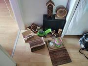 Hamster Terrarium mit Zubehör