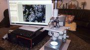 Dunkelfeldmikroskop Zeiss Mikroskop