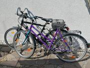 Fahrrad Studentenrad Räder Prophete Rad