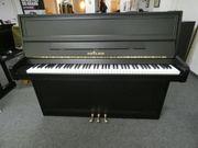 Seiler Klavier von Klavierbaumeisterin aus