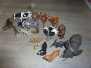 18 x verschiedene Schleich Tiere