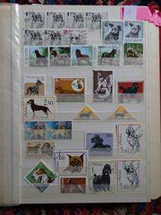 Briefmarken Hunde Lot