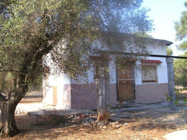 Süditalien Apulien kl Ferienhaus mit