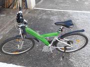 Grünes Mountainbike 26 Zoll