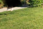 slackline mit Garten Set ohne