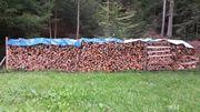 Brennholz jetzt einlagern und den