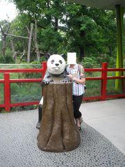Tausche Panda gegen Freizeitpartner