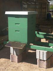 Parzelle Standplatz für Bienenstock Umkreis