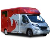 Pferdetransport im 2er Pferdetransporter Pferd