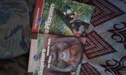 Kindersachbücher Disney Fragen und Antworten