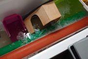 Nagerzubehör WCs rohre Näpfe laufräder