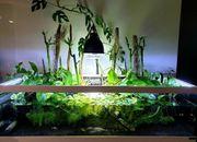 Aquaterrarium inkl Zubehör
