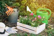 biete Gartenhilfe