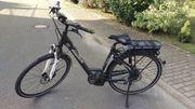 Pegasus Solero E8 E-Bike