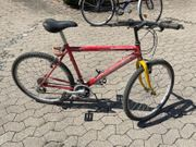 Mountain Bike Experience 26 Zoll