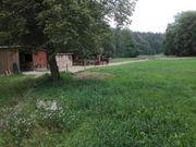 Pferdeparadies Pferdepension westlich von Dresden